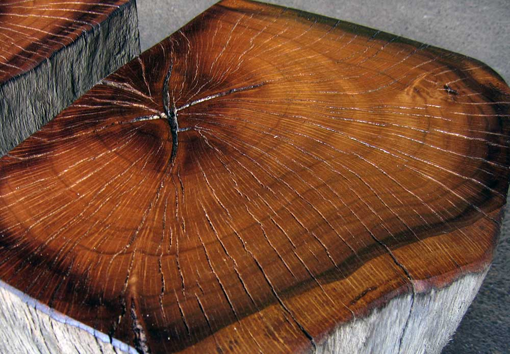 Reclaimed Southern Live Oak Pedestal