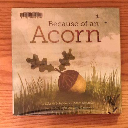 Because of an Acorn by Lola Schaefer