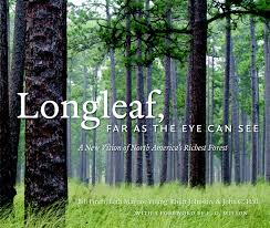 Longleaf, Far as the Eye Can See by Bill Finch