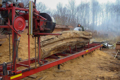 Chestnut Ghost Log Being Milled In The Appalachian Mountains