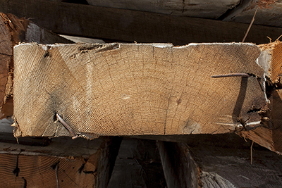 Salvaged Doug Fir Beams End Grain