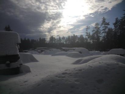 Snow in Longleaf Lumber Yard